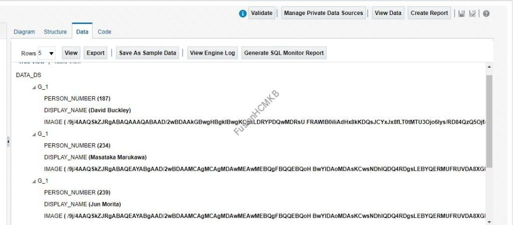 Person Images Query Result in BLOB format.. PER_IMAGES fusion hcm oracle hcm cloud tables