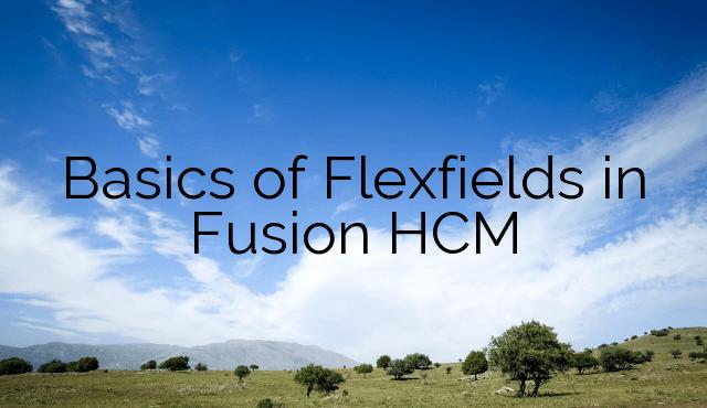Basics of Flexfields in Fusion HCM