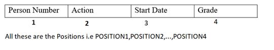 Input file layout