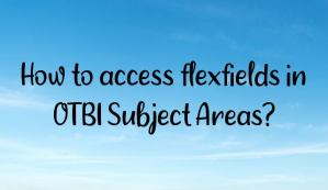 How to access flexfields in OTBI Subject Areas?