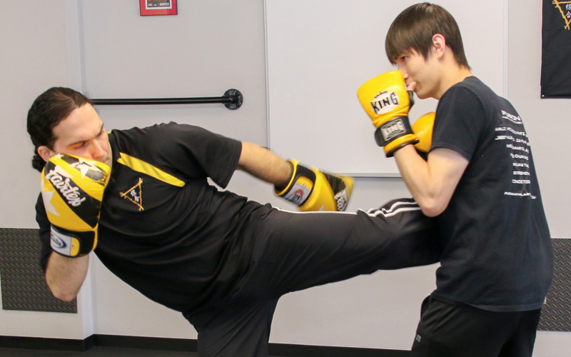 Picture of MMA / Kickboxing