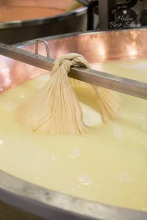 Grana Padano PDO - A new cheese ready to be shaped