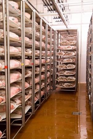 Proscuitto di San Daniele PDO - salting the hams