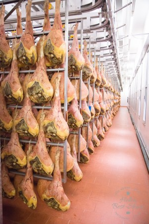The maturing room where the fresh air of St Daniele works its magic on the maturing prosciutto