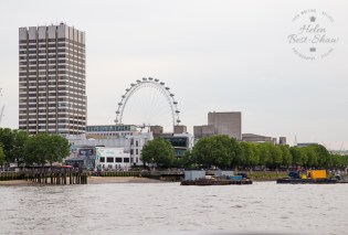 Cruise down The Thames - Embankment to Tower Bridge - The London Eye