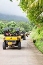Sights on the ATV tour in Moorea