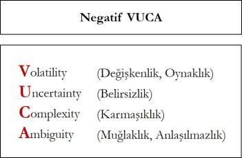 Vuca Negatif