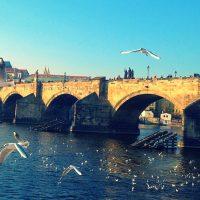 PRAG' DA SEVGİLİLER GÜNÜ