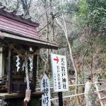 ここはホントの聖域だ!『天岩戸神社』