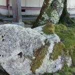 『風の音に包まれる元宮』布杜神社