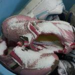 運動靴を洗う季節は魔法の粉で