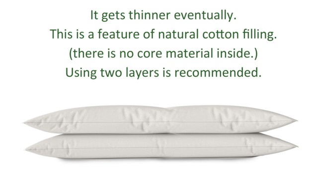 organic pillow topper