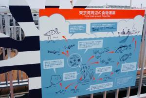 人のくらしと東京湾