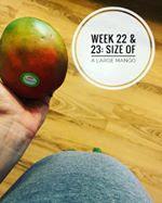 week-22-23