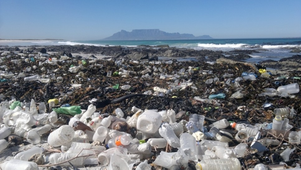 Plastic waste washed up on Cape Town shore was the artist's primary construction material.