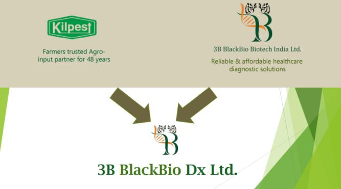 kilpest India Ltd multibageer