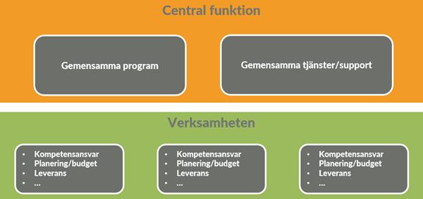 hybrid organisation