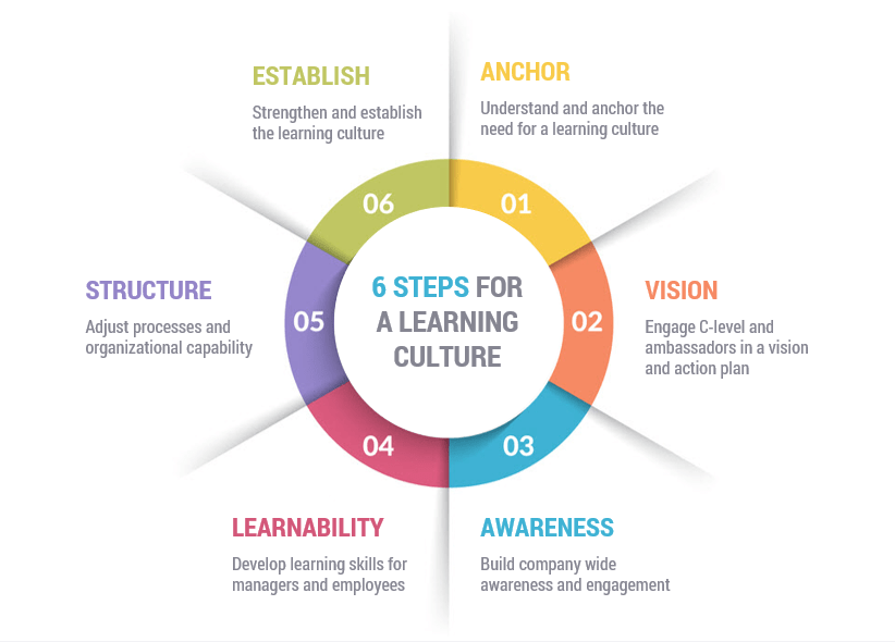 6 steps for a strong learning culture