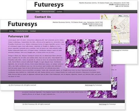 Vibrance Purple