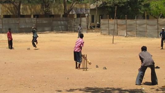 kriket3.jpg