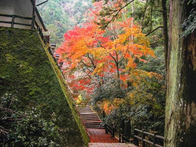 天石門別神社 境内から琴弾の滝へ向かう道
