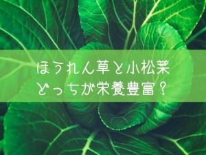 ほうれん草 小松菜