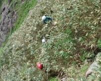 笹薮をトラバース