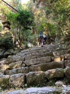 登り808段の階段