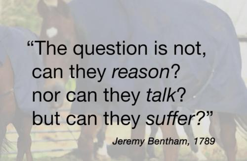 Jeremy Bentham Quote