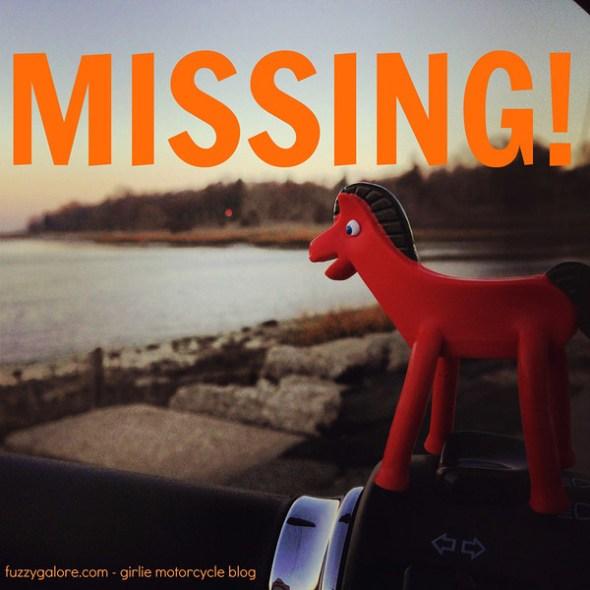 i lost my pokey