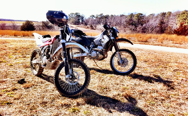 the TE 310 and the DRZ
