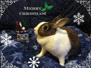 christmasbrittany