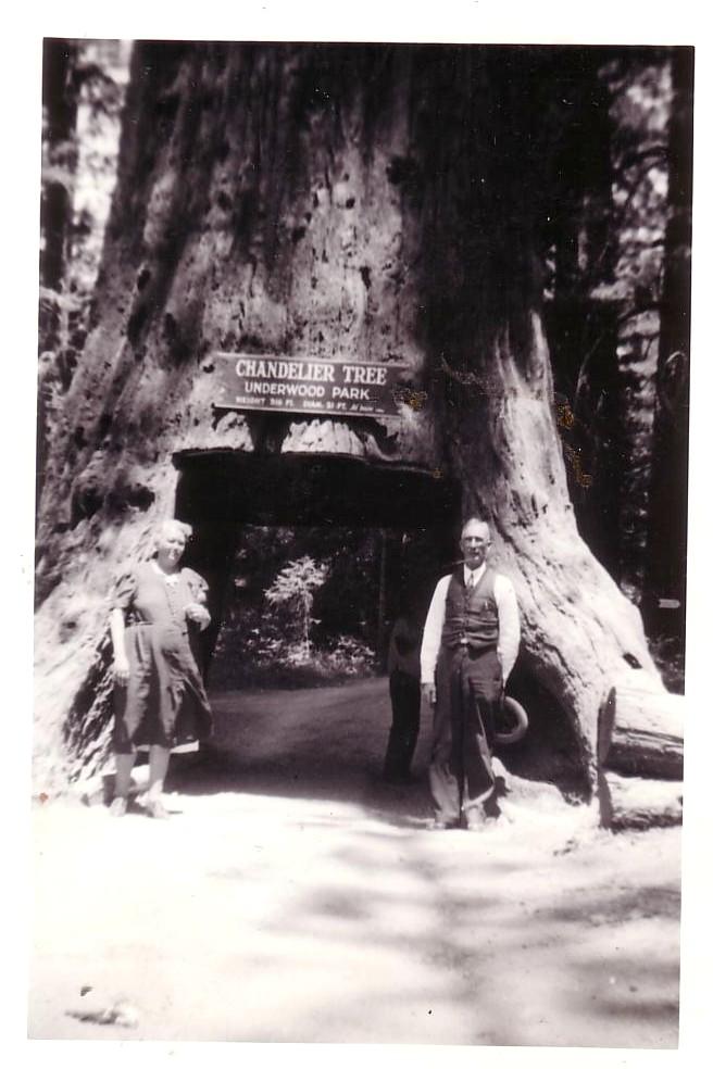 underwood tree park | The Vintage Traveler