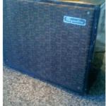 Magnatone amp