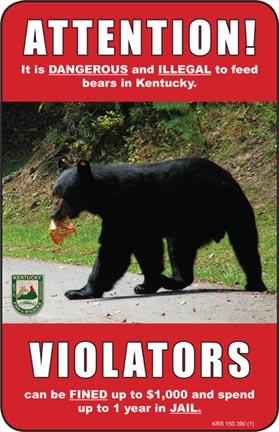Kentucky Department of Fish  Wildlife Black Bears
