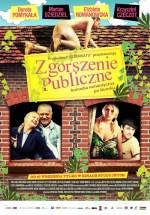 Zgorszenie publiczne online film