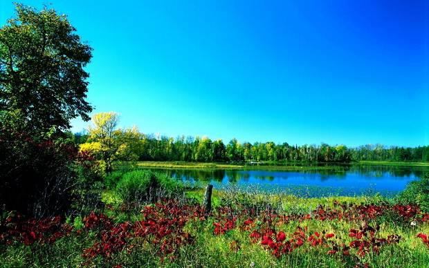 Fall Wallpaper Lake Birbirinden G 252 Zel 25 Yaz Fotoğrafı