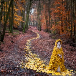 Kirsty Mitchell, English, The Journey Home. Archival pigment print, 2013 Courtesy of the Paine Art Center and Gardens in partnership with the artist.