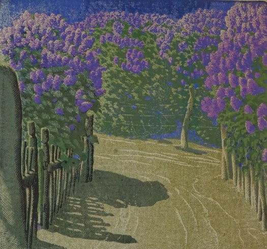 The composition is made up of bright purple lilac bushes with a wood fence around them. Cleaving through the bushes is a dirt trail.