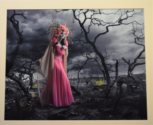 A woman in a pink dress and white shawl walks through a fire-burned landscape. Her headdress of flowers is bright against the cloudy, overcast sky.