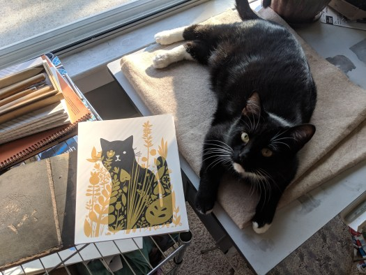 This photo features a black tuxedo cat looking up at the photographer while laying on a desk. Next to him is a print of a black cat on a white background, with long yellow flowers and green leaves obscuring the cat.