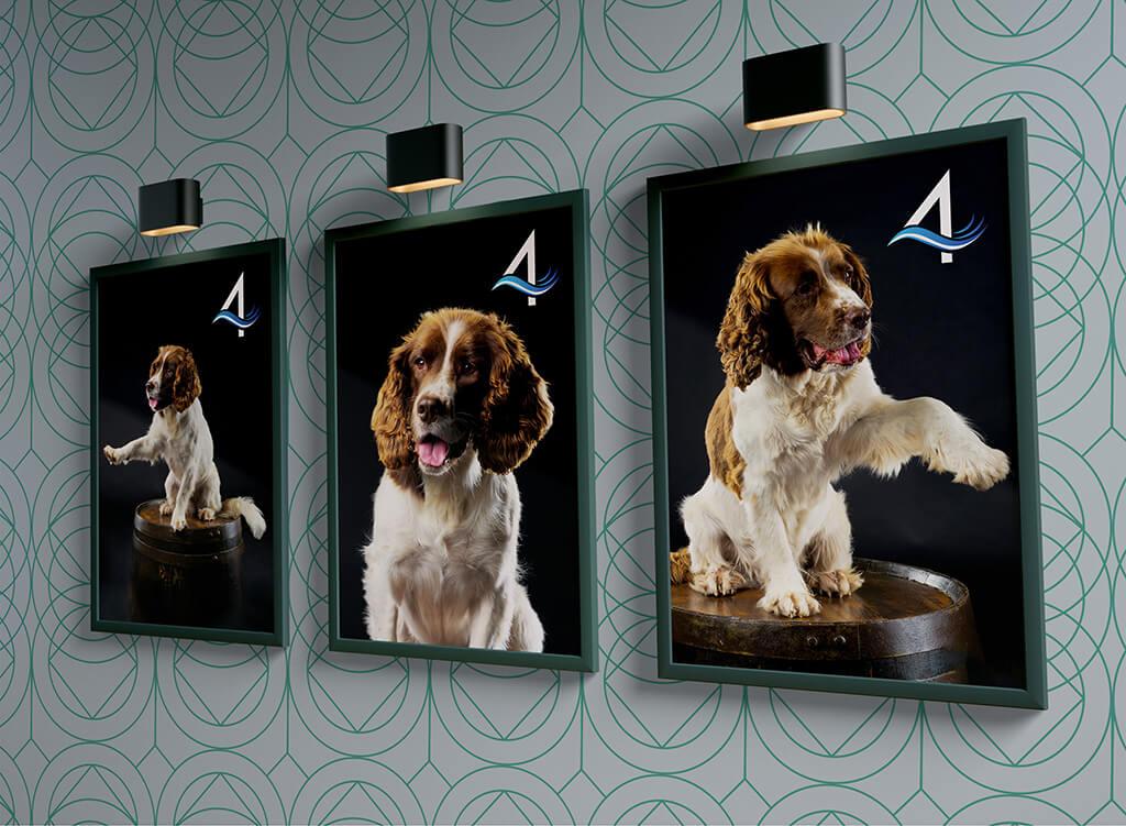 Wall Art Spaniel Dogs