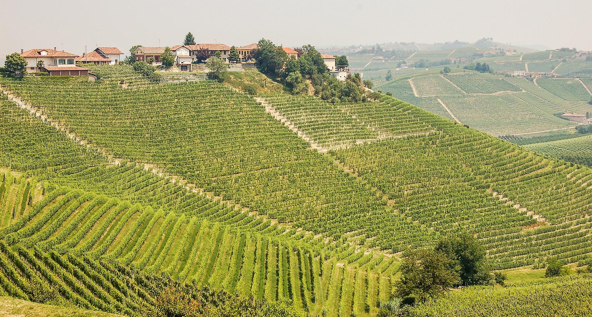 Barolo Region Piedmont