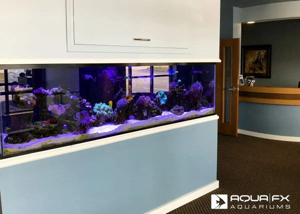 Aqua FX Built Reef Aquarium