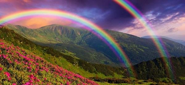 Индикатор Rainbow