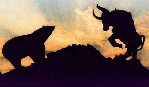 bulls bears power