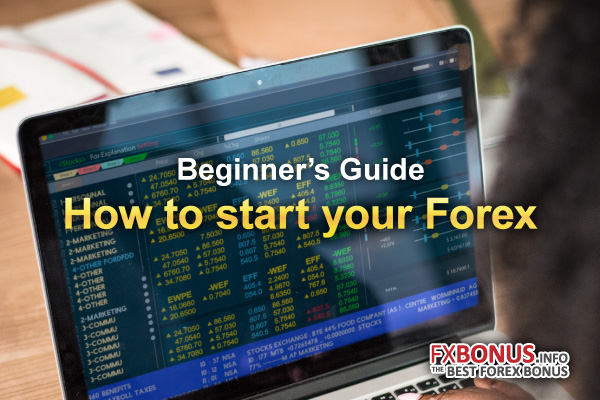 What is Forex – Where and How to start online trading – FXBONUS INFO