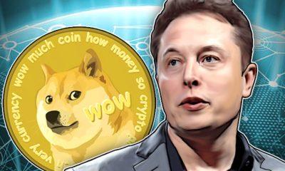 4 Reasons to Buy Shiba Inu coin