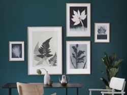 wall art art prints