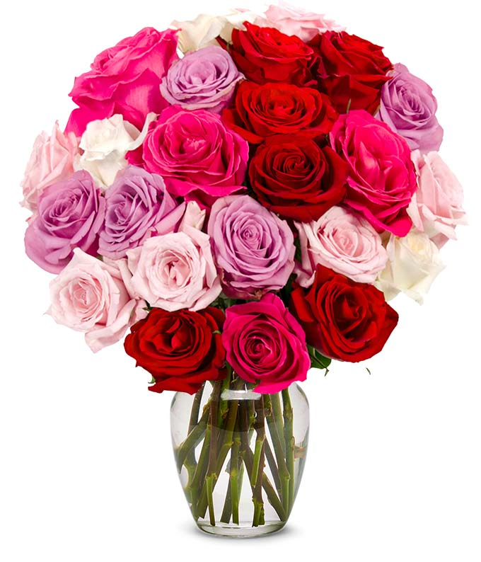 Two Dozen Assorted Spring Roses At From You Flowers